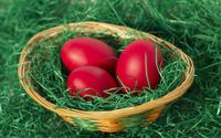 Easter eggs in a basket wallpaper 2880x1800 jpg
