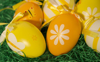Easter eggs on grass wallpaper 2880x1800 jpg