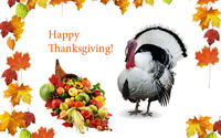 Happy Thanksgiving [6] wallpaper 1920x1200 jpg