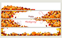 Pumpkins and cones in the autumn leaves wallpaper 3840x2160 jpg
