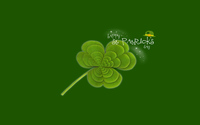 Saint Patrick's Day wallpaper 2560x1600 jpg