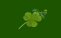 Saint Patrick's Day wallpaper 2560x1600 jpg