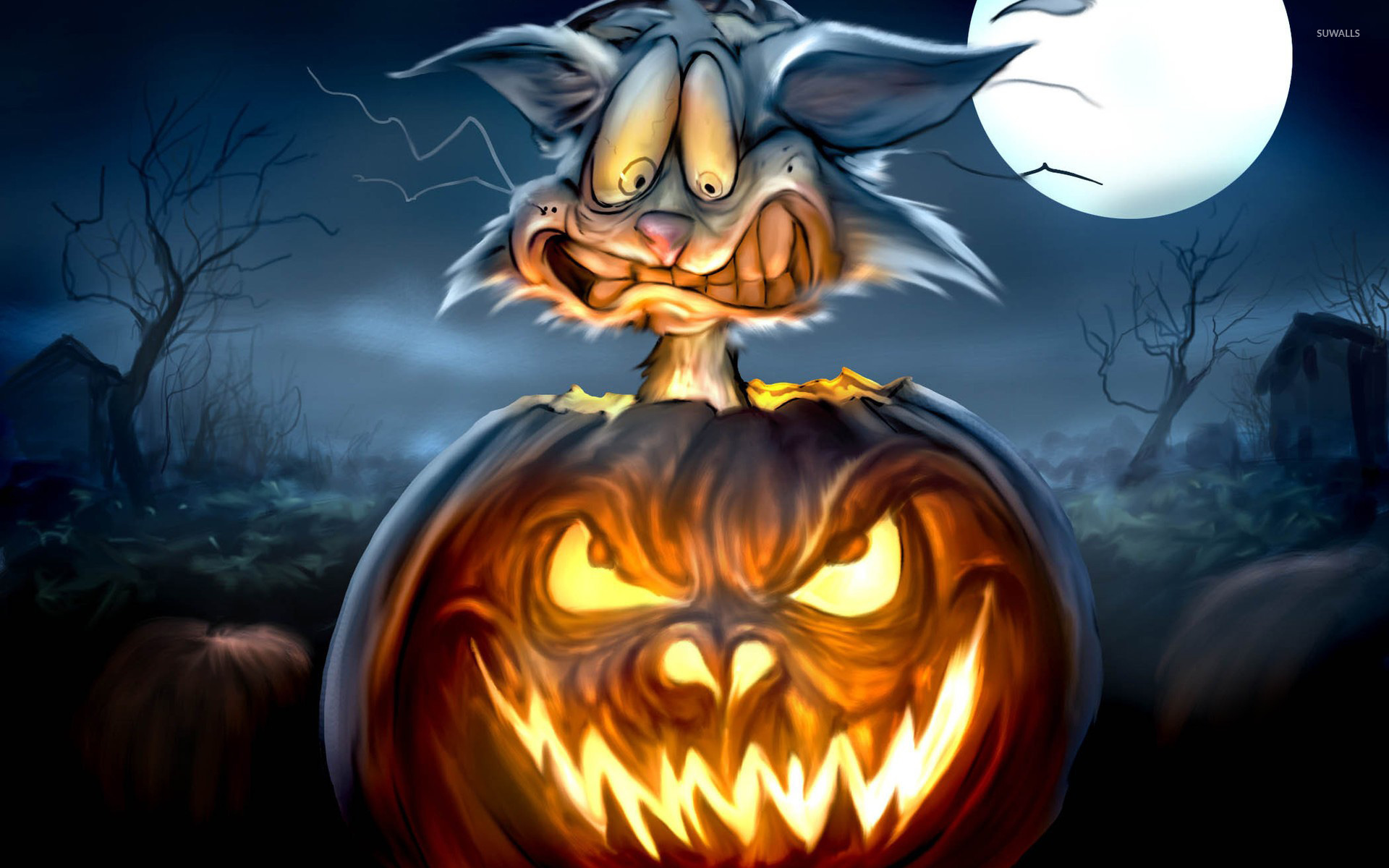 scared cat in a jack-o'-lantern wallpaper - holiday wallpapers - #24365
