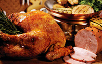 Thanksgiving turkey [2] wallpaper 1920x1200 jpg
