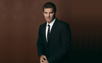 David Boreanaz wallpaper 2560x1600 jpg
