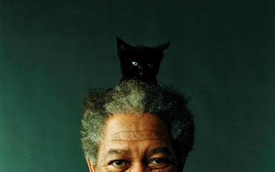 Morgan Freeman [2] wallpaper