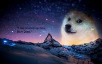 Doge wallpaper 1920x1200 jpg