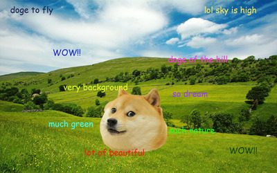 Doge [7] Wallpaper