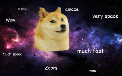 Doge [3] wallpaper