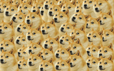 Doge pattern wallpaper
