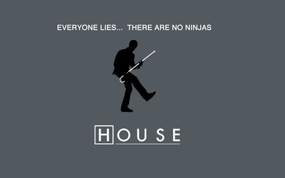 Everyone lies... there are no ninjas wallpaper
