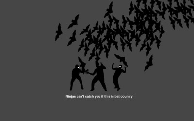 Ninjas can't catch you if this is bat country wallpaper
