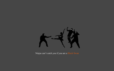 Ninjas can't catch you if you're a Black Swan wallpaper
