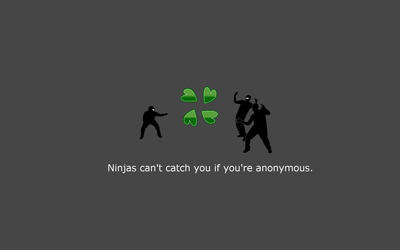 Ninjas can't catch you if you're anonymous wallpaper