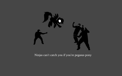 Ninjas can't catch you if you're pegasus pony wallpaper