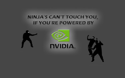 Ninjas vs Nvidia wallpaper