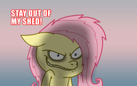 Stay out of my shed / Maniac Fluttershy wallpaper 2560x1600 jpg