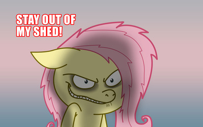 Stay out of my shed / Maniac Fluttershy wallpaper