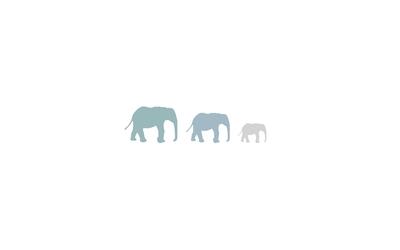 Elephants [10] wallpaper