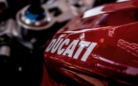 Ducati logo wallpaper 2560x1600 jpg