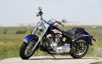 Harley Davidson Softail wallpaper 1920x1200 jpg