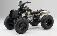 Honda TRX420 without body wallpaper 1920x1200 jpg