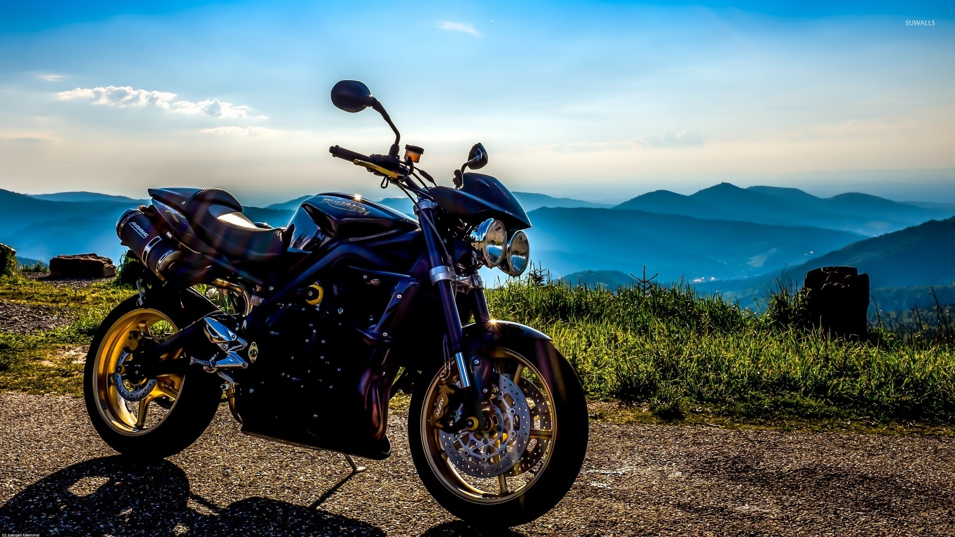 Triumph wallpaper - Motorcycle wallpapers - #32646