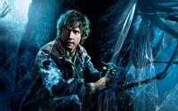 Bilbo- The Hobbit -The Desolation of Smaug wallpaper 2560x1440 jpg