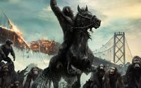 Caesar in Dawn of the Planet of the Apes wallpaper 2560x1600 jpg