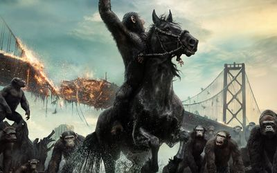 Caesar in Dawn of the Planet of the Apes wallpaper