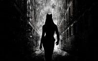 Catwoman wallpaper 1920x1200 jpg