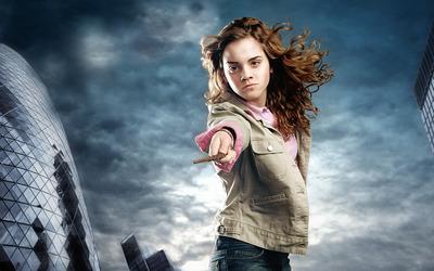 Harry Potter [2] wallpaper