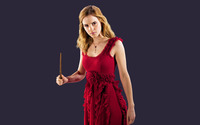 Hermione Granger - Harry Potter wallpaper 1920x1200 jpg