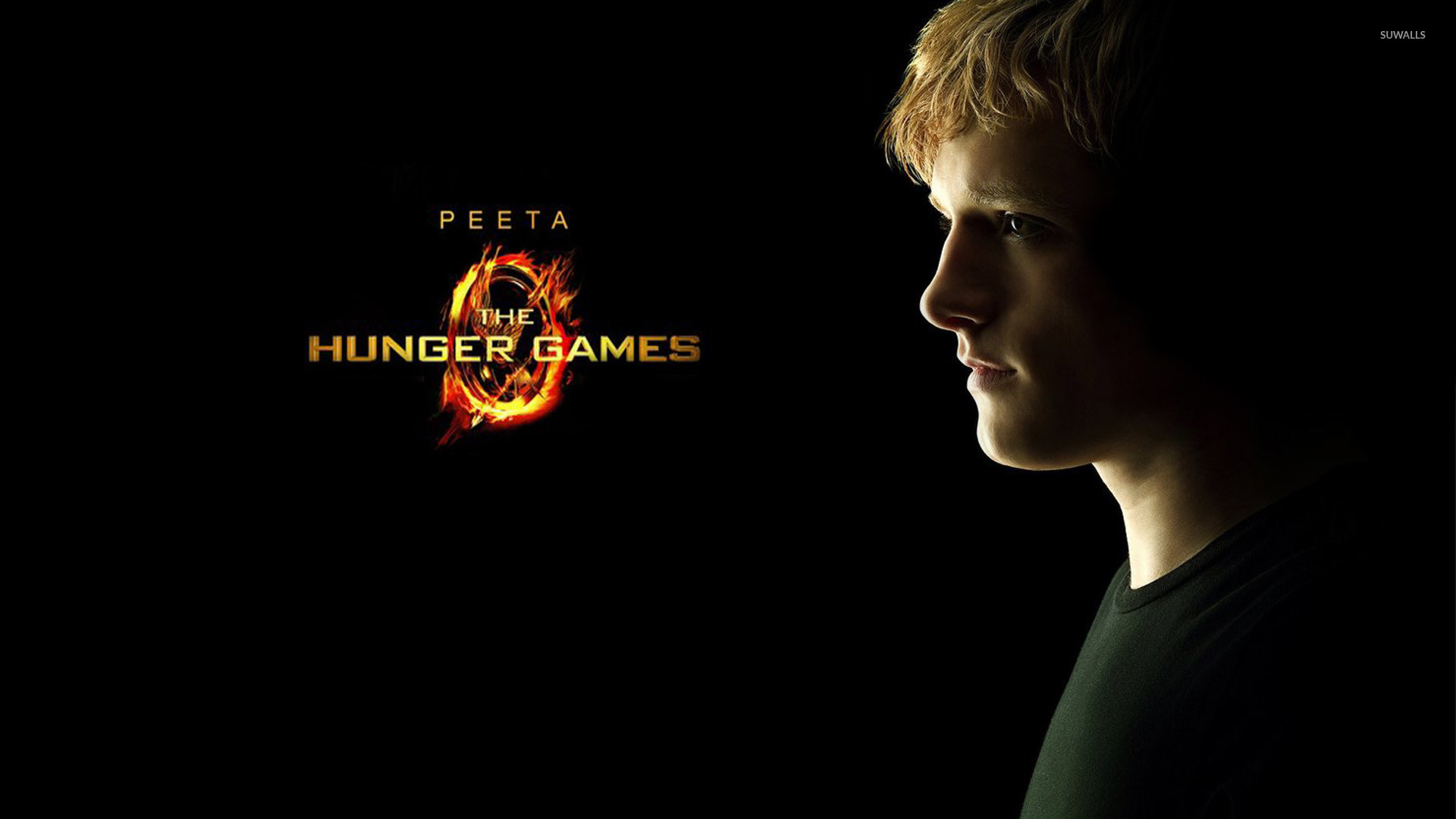 hunger games movie wallpapers - photo #4
