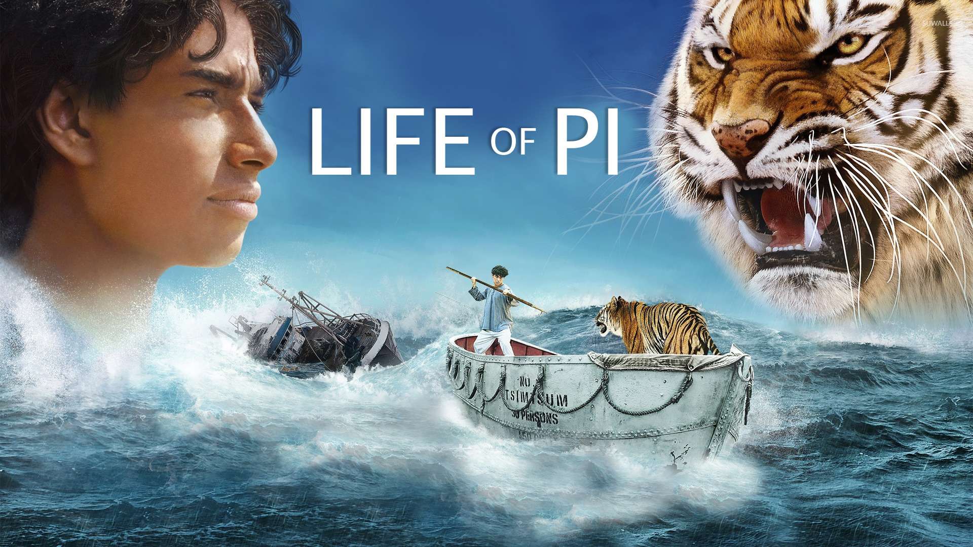 Pi patel life of pi 2 wallpaper movie wallpapers for Life of pi patel