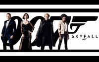 Skyfall wallpaper 2560x1600 jpg