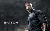 Snitch wallpaper 1920x1200 jpg