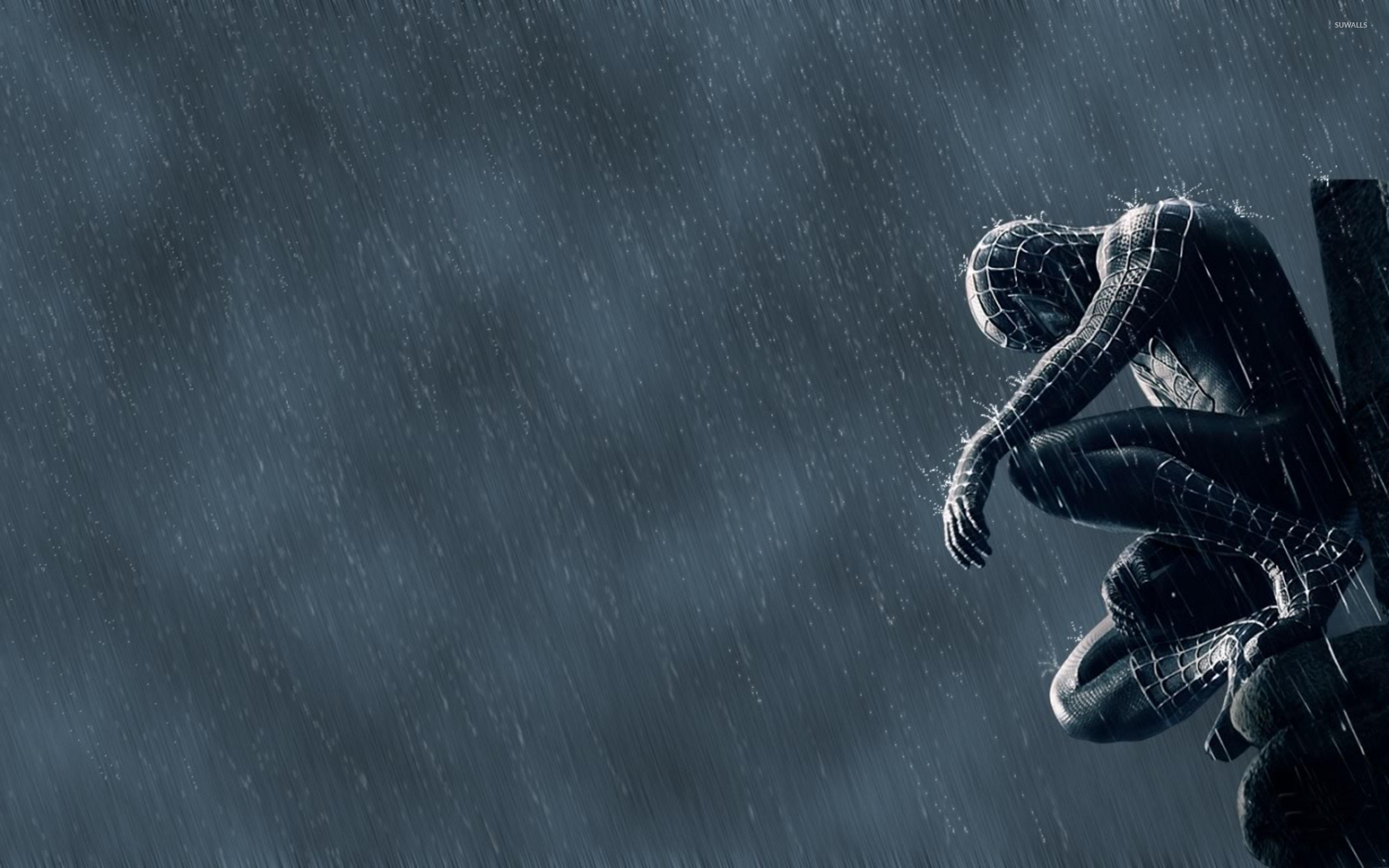 Spider Man 3 2 Wallpaper Movie Wallpapers 43091