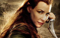 Tauriel - The Hobbit: The Desolation of Smaug wallpaper 1920x1080 jpg