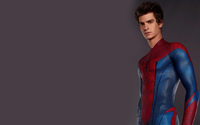 The Amazing Spider-Man [8] wallpaper 2560x1600 jpg