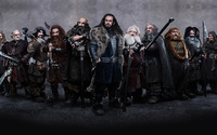 The Hobbit [2] wallpaper 2560x1600 jpg
