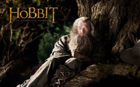 The Hobbit: An Unexpected Journey [12] wallpaper 1920x1200 jpg