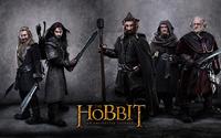 The Hobbit: An Unexpected Journey [13] wallpaper 2560x1600 jpg