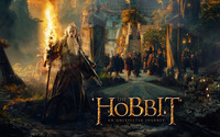 The Hobbit: An Unexpected Journey wallpaper 2560x1600 jpg