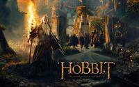 The Hobbit: An Unexpected Journey wallpaper 2560x1600 jpg