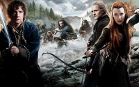 The Hobbit: The Desolation of Smaug [4] wallpaper 1920x1080 jpg