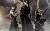 The Hobbit: The Desolation of Smaug [5] wallpaper 1920x1080 jpg
