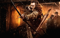 The Hobbit: The Desolation of Smaug [9] wallpaper 1920x1200 jpg