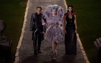 The Hunger Games Catching Fire wallpaper 1920x1200 jpg