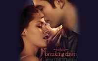 The Twilight Saga: Breaking Dawn: Part 1 [4] wallpaper 2560x1600 jpg
